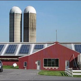 kurtz-farm