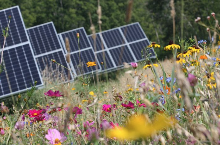 Tap into Locally Generated Green Power